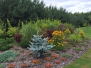 Ogród naturalny